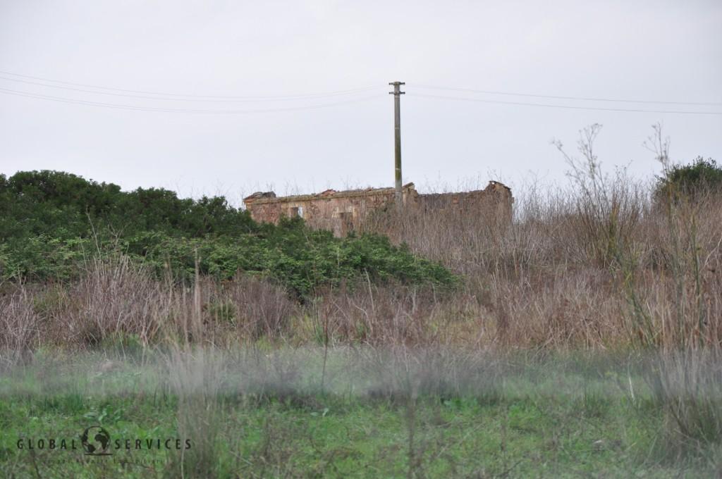 Terreno Nurra sp65