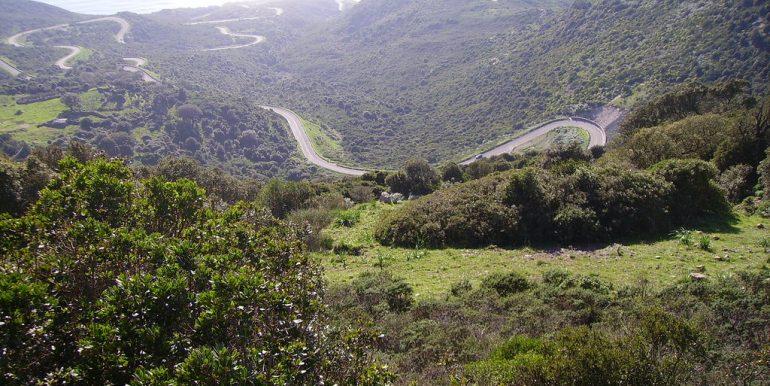 Terreno 22 Ettari