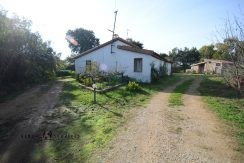 Farmhouse with land Sa Segada