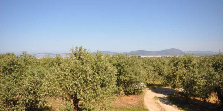 Villa in vendita Alghero