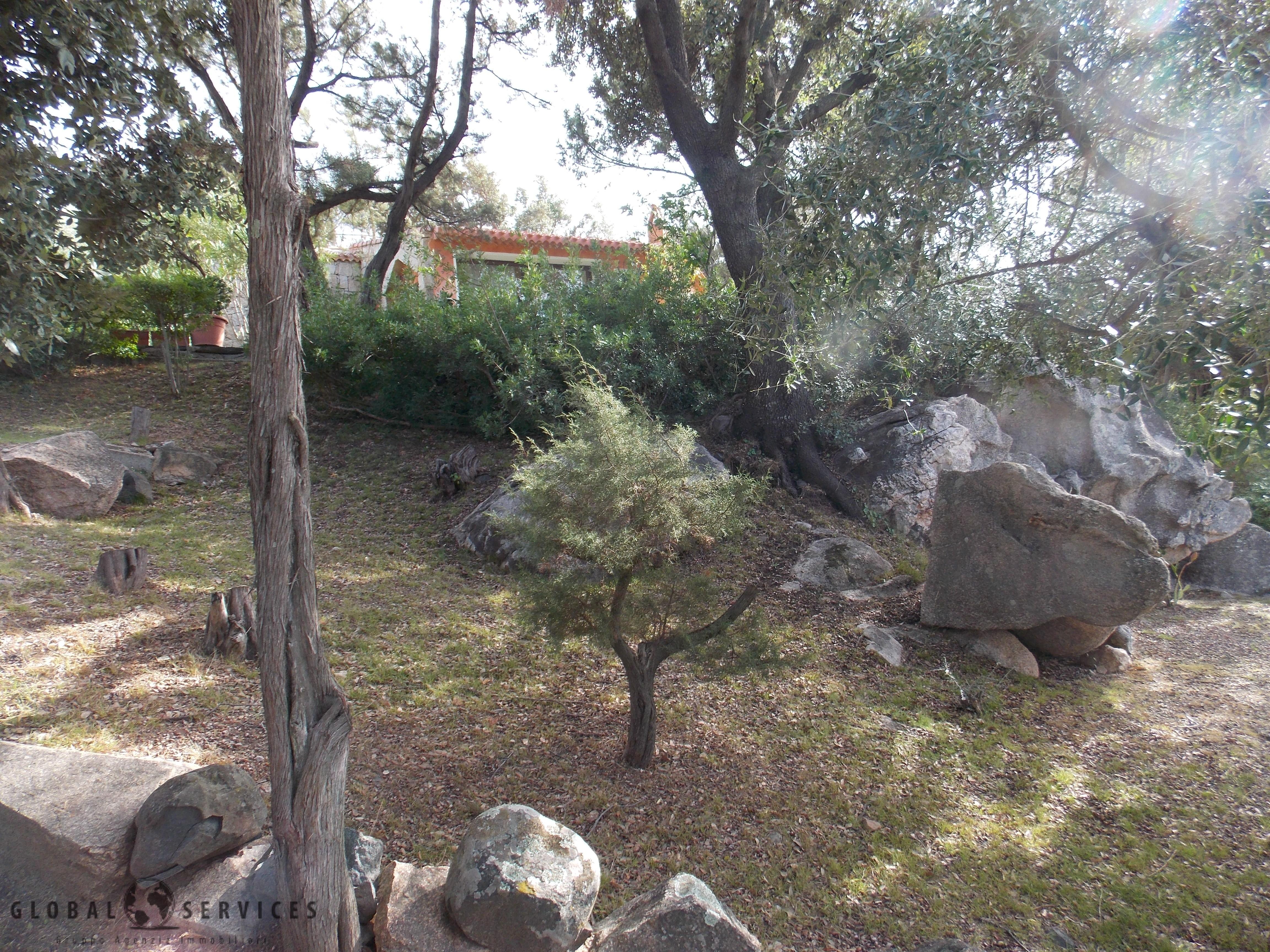 Baia sardinia villa in vendita global services immobiliari for Vendita piante da frutto sardegna