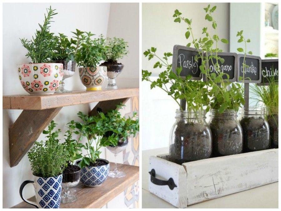 Arredare la cucina con le piante