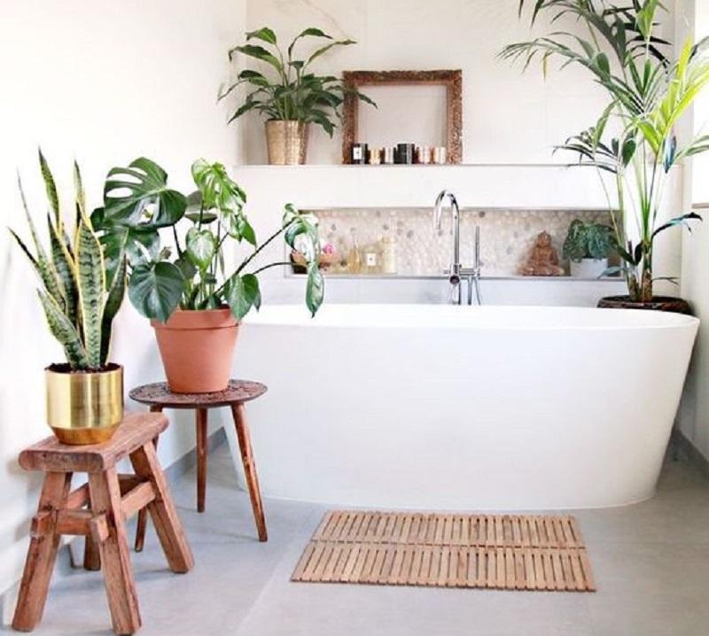 Arredare il bagno con le piante