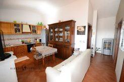 Appartamento in bifamiliare con dependance e terreno