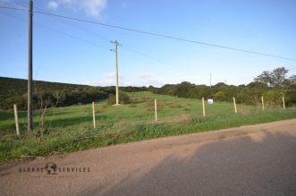 Terreno in vendita Nurra di Alghero