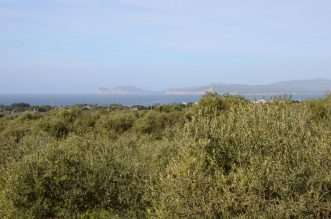 Sea View Villa Sale Alghero