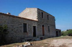 Azienda Agricola in vendita Tempio Pausania