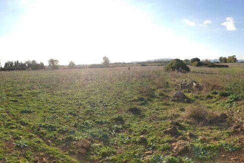 Terreno agricolo monte Uccari